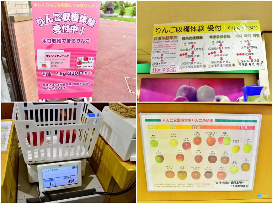 弘前蘋果公園2.jpg