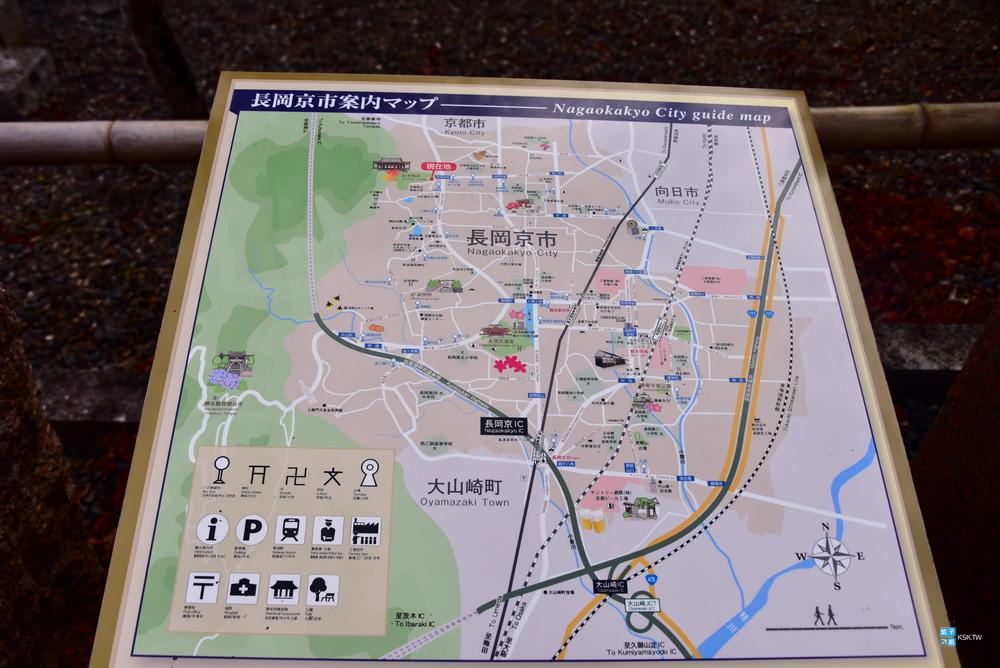 DSC_9869.jpg