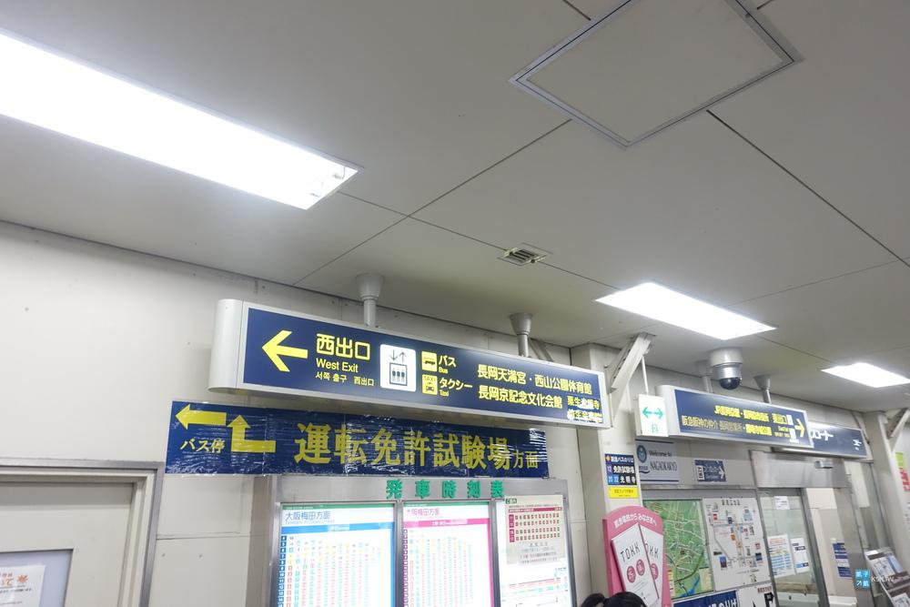 DSC03571.jpg