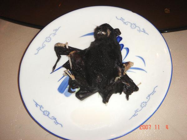 恐怖水果蝙蝠湯之蝙蝠