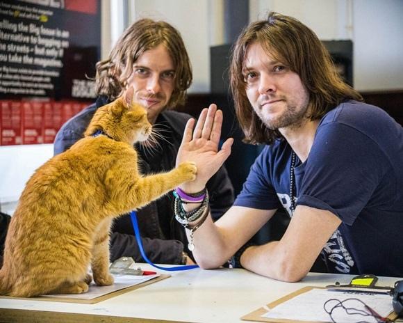 003【遇見街貓BOB】相關圖片_Bob的招牌擊掌動作,引來民眾爭相模仿,後左為路克索德威,右為真實人物詹姆士伯恩.jpg