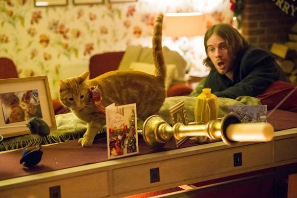 001【遇見街貓BOB】劇照_本片將在聖誕期間,舉辦公益捐票房活動,左為Bob,右為路克索德威.jpg