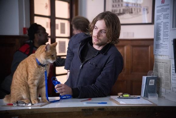 002【遇見街貓BOB】劇照_本片被網友譽為「療癒系暖心神片」,非常適合聖誕佳節與親朋好友一同觀賞,左為Bob,右為路克索德威.jpg