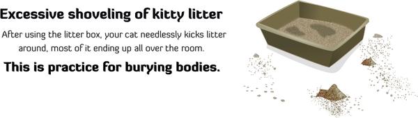 litter.png