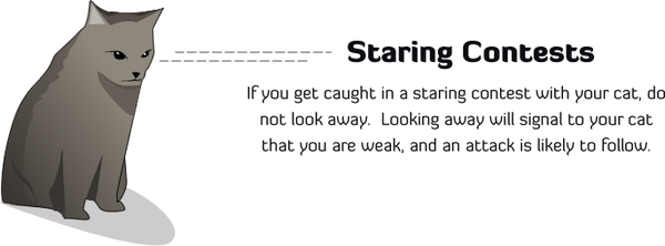 staring.png