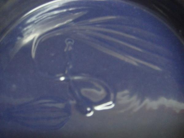正港紫草皂trace