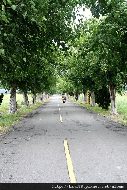20120611台南鹽水岸內糖廠1
