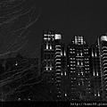 20130221台中元宵燈會12