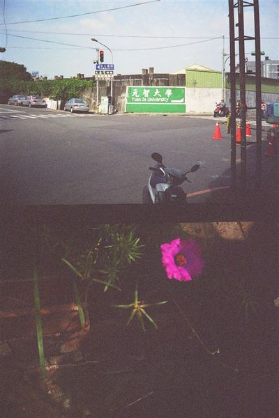 Photo21_17.jpg
