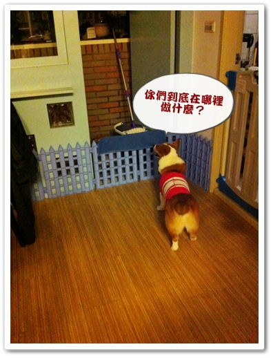 PhotoSender_20110812_090937863.jpg