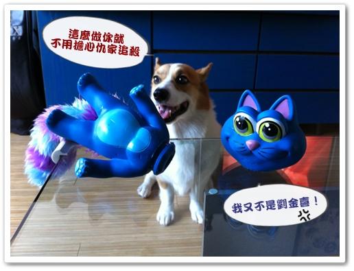 PhotoSender_20110810_103408232.jpg