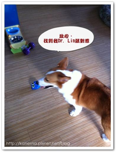 PhotoSender_20110810_103836459.jpg