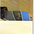 PhotoSender_20110816_103614612.jpg