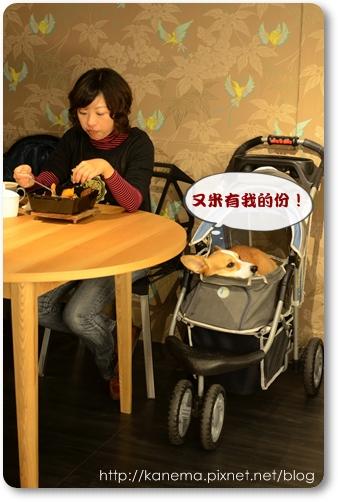 DSC_2378.jpg