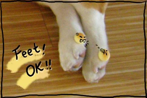 Ding_feet.jpg