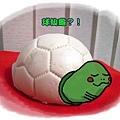 長生龜.jpg