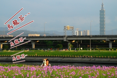 DSC_8972.JPG