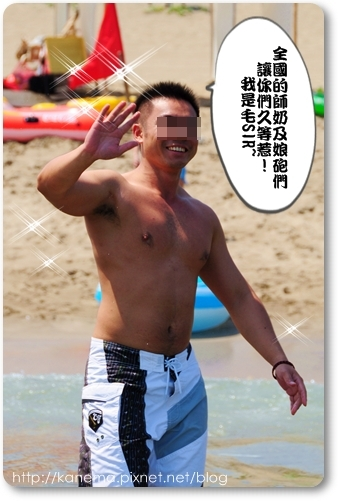毛1.JPG