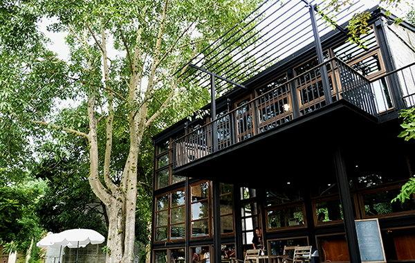 玩轉泰國領略泰北大自然風光:Cafe' Rongbom