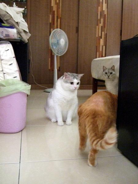 2008_05_18 082.jpg