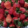 草莓_6168.jpg