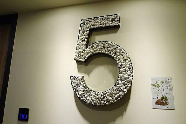 5F1.JPG