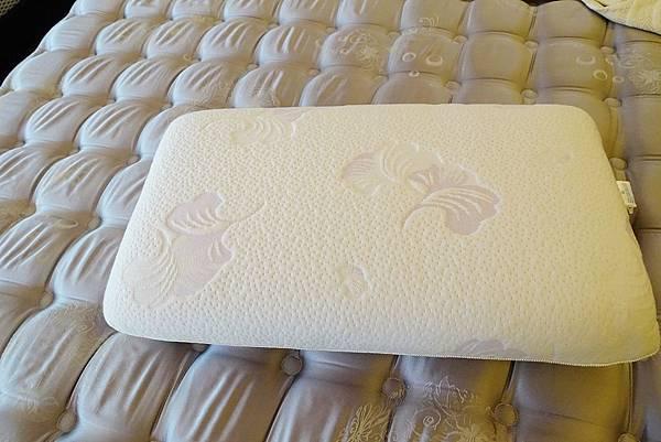3.水冷膠-白枕頭1.JPG