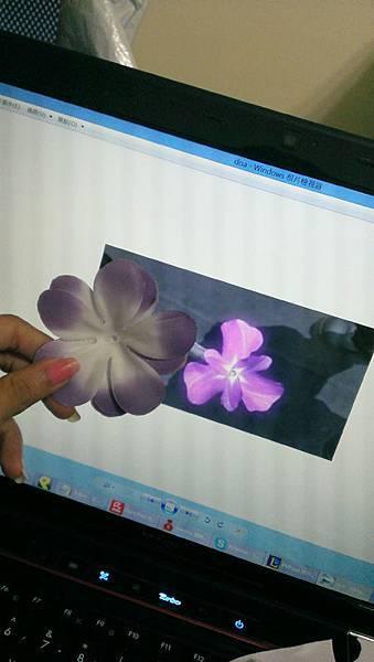 用紫色花瓣堆疊出電玩裡的效果
