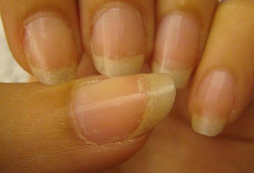 第二層指片修護調理蜜