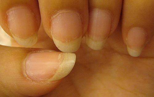 擦了第一層指片修護調理蜜