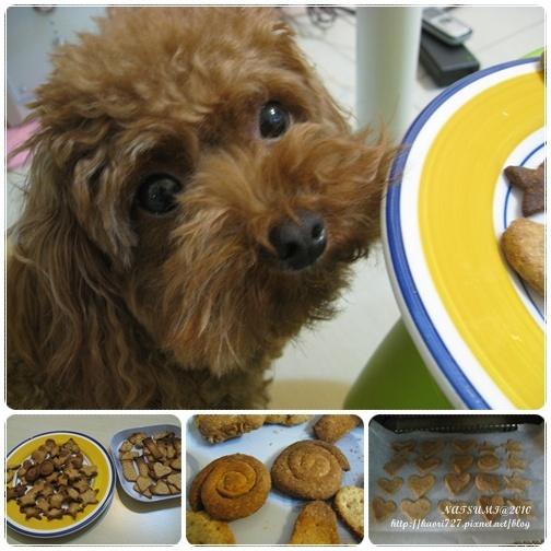 cookie-3.jpg