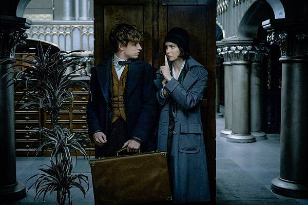 fantastic-beasts-redmayne-waterston small