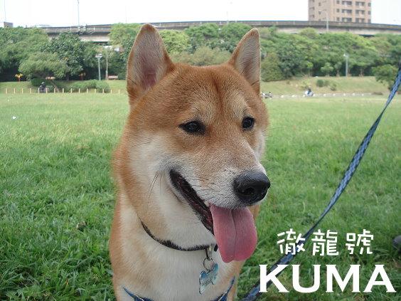 KUMA05.jpg