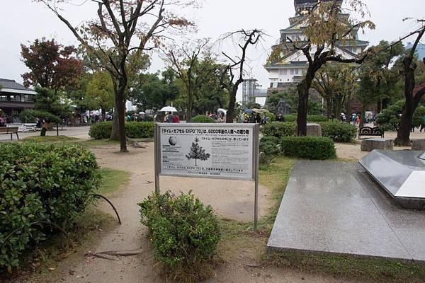 20151119-大阪-4676.jpg