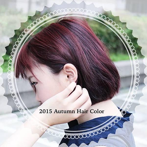 TOP 秋冬髮色 秋冬流行 流行髮色