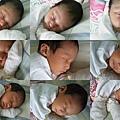 20090927-amber睡覺覺.jpg