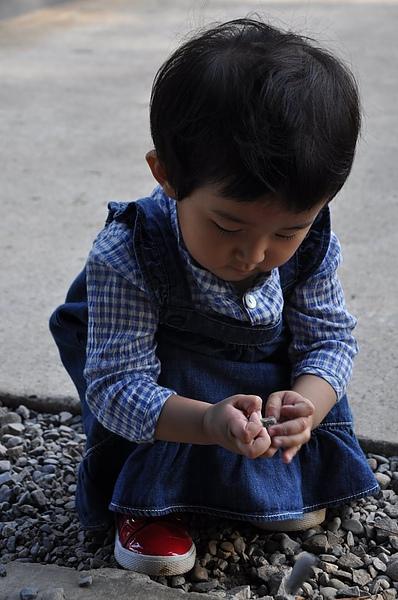 2010.12.1綠風草原 (74).JPG