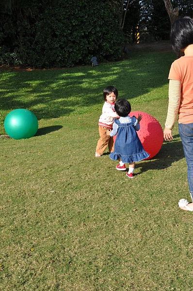 2010.12.1綠風草原 (45).JPG
