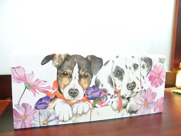 波斯狗狗面紙盒