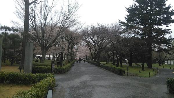 櫻花_170408_0010.jpg