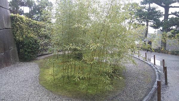 櫻花_170408_0022.jpg