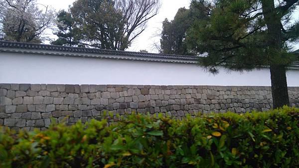 櫻花_170408_0064.jpg