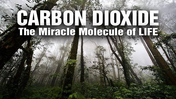 二氧化碳的新現象一.jpg