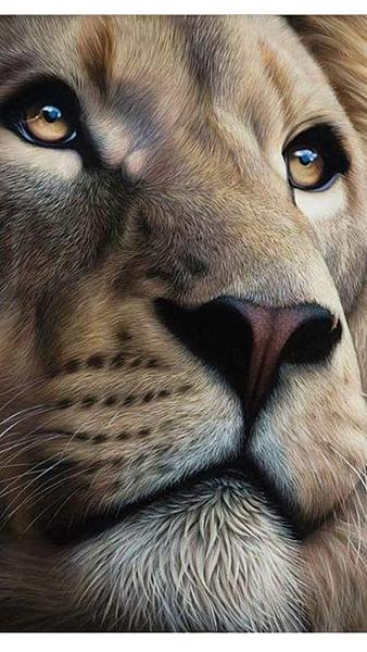 獅子.png