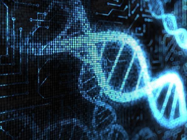 Gene3