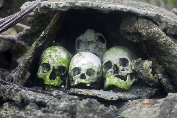 skull-island04