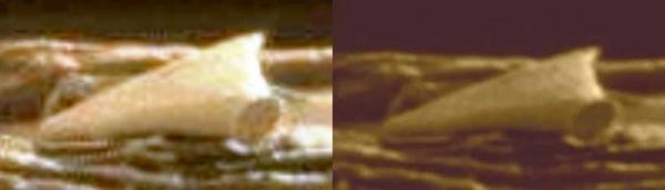 火星上拍到的碎片2