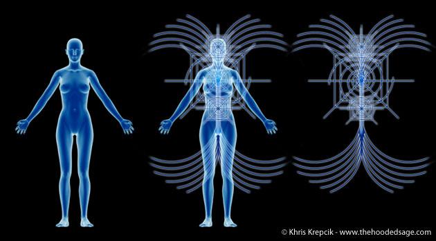 holographic_bodies