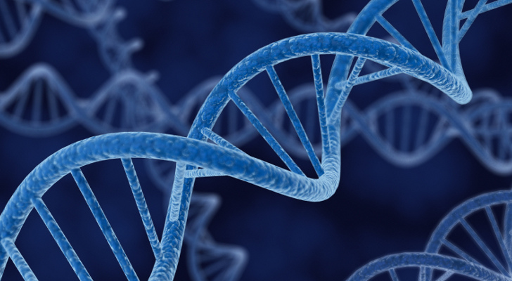 Gene-Switched-On-by-Stress-Speeds-Up-the-Spread-of-Cancer-377951-2