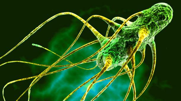 Germs-bacteria-virus-antibacterial-soap-health